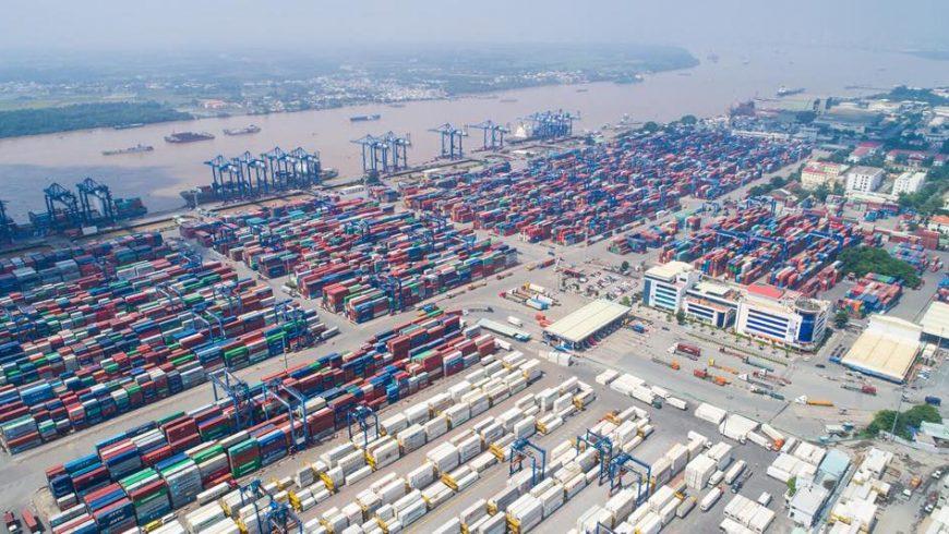 Hướng dẫn khai báo thông tin khi triển khai hệ thống quản lý hải quan tự động tại cảng Tân cảng Cát Lái